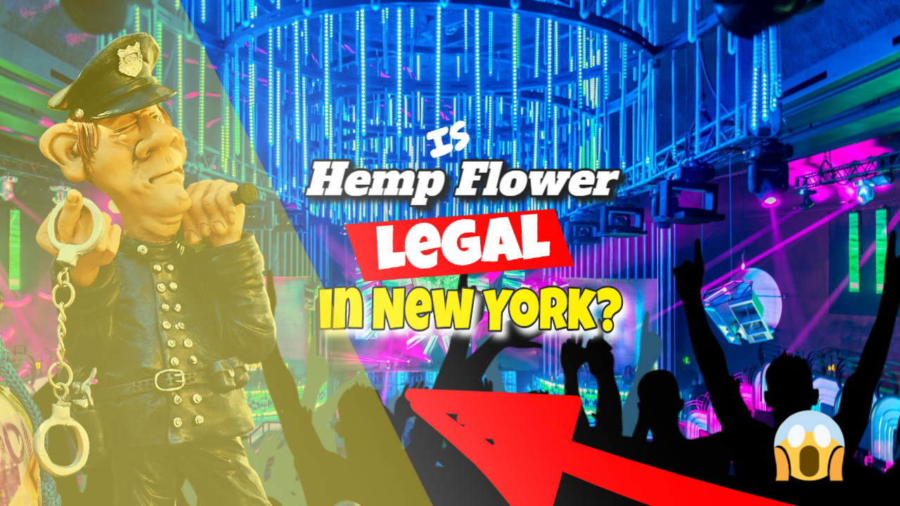"""Featured image bearing the text: """"Is Hemp Flower Legal in NY""""."""