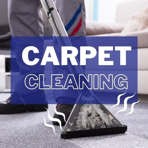Steam Carpet Cleaning For Allergy Prevention
